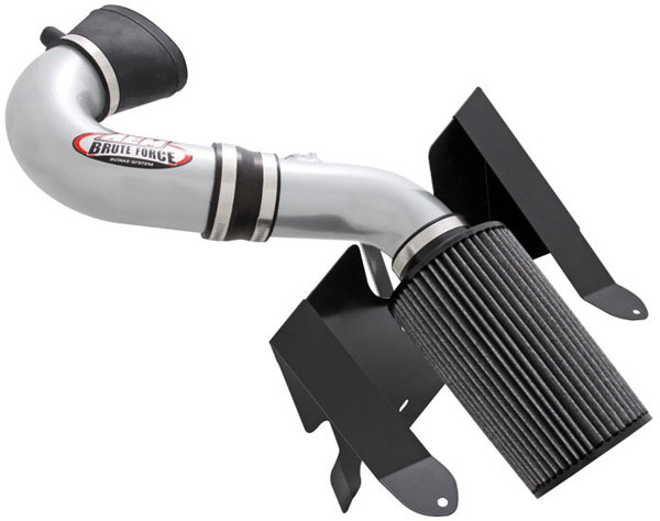 AEM 21-8112DC |  Brute Force Intake System FORD MUSTANG GT V8 2005-06 - Silver Gray