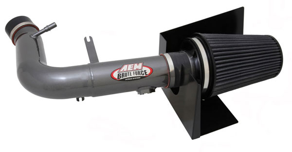 AEM 21-8119DC:  Brute Force Intake System FORD F-150 4.6L 08 - Silver Gray
