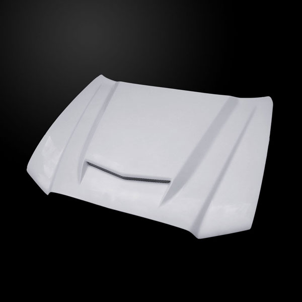 Amerihood DC11AHRSSFHW |  Dodge Charger Type-RS Style Functional Ram Air Hood; 2011-2014