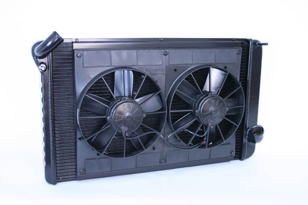 """DeWitts 4239069M 