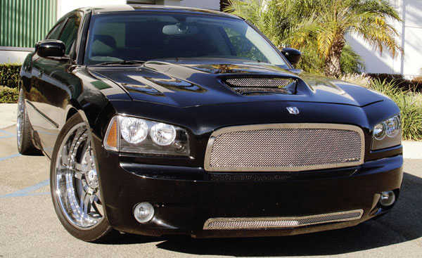 T-Rex 54474:  Dodge Charger 2005 - 2010 Upper Class Polished Stainless Mesh Grille