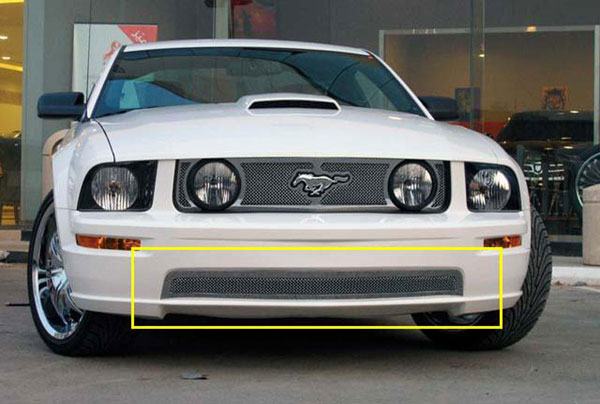T-Rex 55516:  Ford Mustang GT Models 2005 - 2009 Upper Class Polished Stainless Bumper Mesh Grille - With Formed Mesh Center