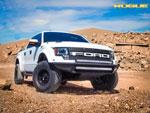 Rogue Racing Raptor Throttle Front Bumper Mesh Skins, Standard Skid Plates, Satin Black Powder Coat; 2010-2014
