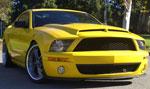 Trufiber Mustang GT500 Venom Hood Gen. 2 (S***** Style Hood Pins Required) V8; 2005-2009