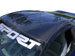 RKSport 2005-10 Corvette C6 Carbon Fiber Targa Top Cover