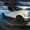 Amerihood F1509AHTEFH | Ford F-150 Type-E Style Functional Ram Air Cooling Hood; 2009-2014 Alternate Image 7